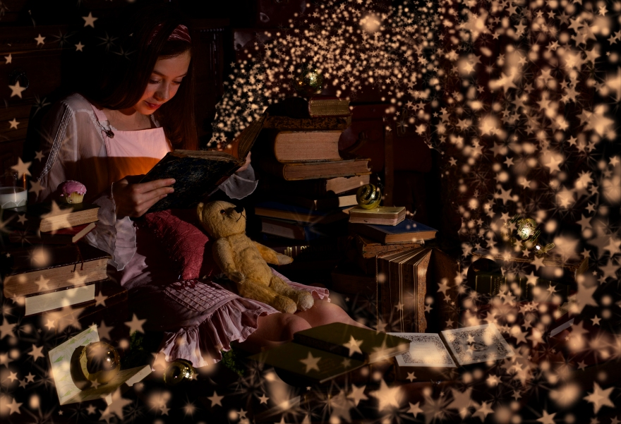 bella book sparkle 2
